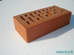 Perforated facing bricks Janka 11.101100L