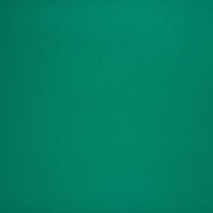 Kiliminė danga Beaulieu Real PIN UP 065/EVENT COARD FOAM 6065, ryškiai žalia
