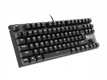 Klaviatūra Keyboard GENESIS THOR 300 TKL GAMING White Backlight USB, US layout