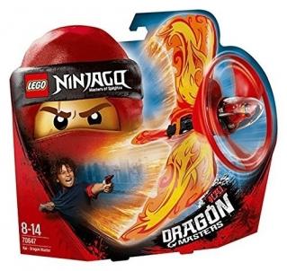 Konstruktorius 70647 LEGO® Ninjago NEW 2018!