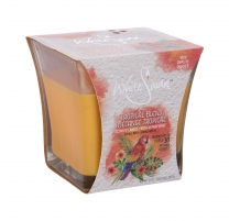 Kvapni žvakė White Swan Tropical Blend Scented Candle 283,5g Kvapai namams