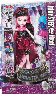 Lėlė DNX33 / DNX32 Draculaura Monster High