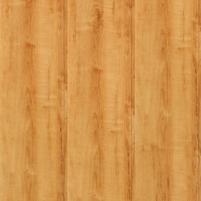 LENTELES MPP 2600*250*7 BERŽAS AUKSINIS B072 Siding (vinyl, fiberboard, wood)