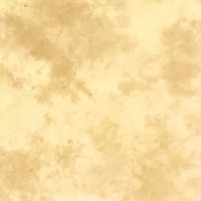 Medžiaginis fonas Lastolite 3x3.5m ARIZONA