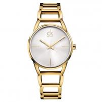 Moteriškas laikrodis Calvin Klein K3G23526
