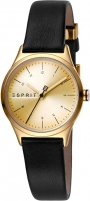 Women's watches Esprit Essential Mini Gold Black ES1L052L0025