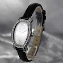 Moteriškas laikrodis Pierre Cardin PC105092F02