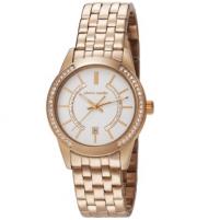 Women's watches Pierre Cardin PC106582F08