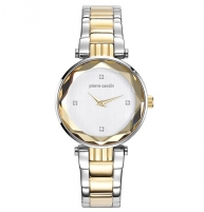 Women's watches Pierre Cardin PC107902F05