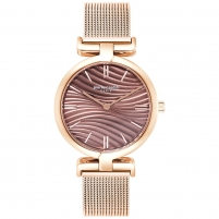 Women's watches Pierre Cardin PC902702F08