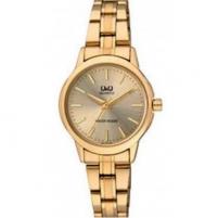 Moteriškas laikrodis Q&Q Q861J010Y