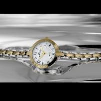 Moteriškas laikrodis RUBICON RNBC96TAWX03BX