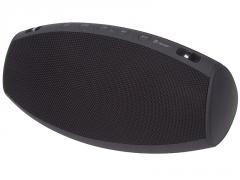Nešiojama garso kolonėlė Tracer Champion BT black 46171 Nešiojamos garso kolonėlės