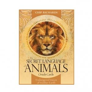 Oracle kortos The Secret Language of Animals