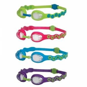 Plaukimo akiniai Sea Squa Jr goggle size JR Glasses for water sports
