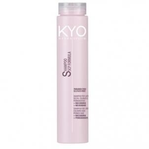 Plaukų šampūnas Freelimix (Shampoo For Dry Coloured And Permed Hair ) 250 ml Šampūnai plaukams