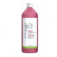 Plaukų šampūnas Matrix Biolage RAW Recover (Shampoo) 325 ml Šampūnai plaukams