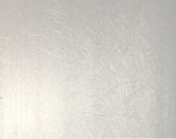 Dailylentė PVC 98160-13S 200*2950 (5,9m2) HHT Dailylentės (PVC, MPP, medžio)