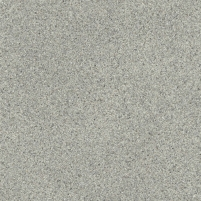 PVC floor covering 99D MASSIF IRIS (pilka), 2 m