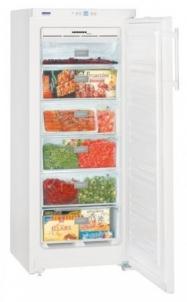 Freezer LIEBHERR GNP 2313  Refrigerators and freezers