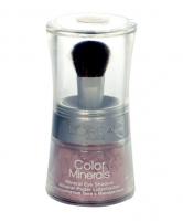 Šešėliai akims L´Oreal Paris Color Minerals Eye Shadow Cosmetic 2g 05 Icy Ruby Šešėliai akims