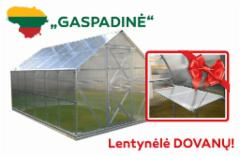Greenhouse GASPADINĖ 6 x 2,64 x 2,42 (15,84m2) su 6 mm. polikarbonato danga Greenhouses