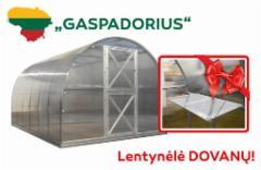 Šiltnamis Gaspadorius (17,22m2) 6000x2870x2250 su 4mm polikarbonato danga Šiltnamiai