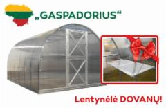 Šiltnamis Gaspadorius (22,96m2) 8000x2870x2250 su 4mm polikarbonato danga Šiltnamiai