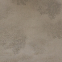 SL18150 SELENA, 10,05x0,53m,brown medžiais wallpaper, Metyl. Vlies