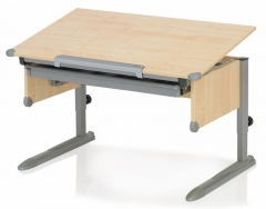 Stalas COLLEGE BOX II maple/silver The young mans desk