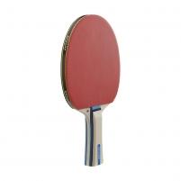 Stalo teniso raketė Dunlop RAGE 40 × 30 cm Stalo teniso raketės