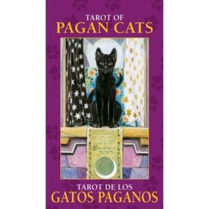 Taro Kortos Pagan Cats Mini