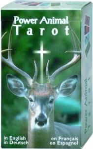 Taro Kortos Power Animal