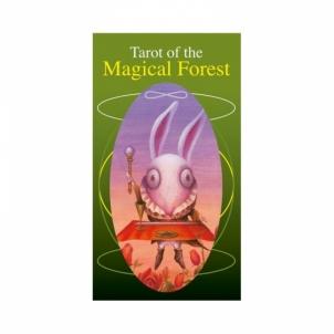 Taro Kortos Tarot of the Magical Forest