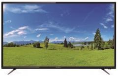 Televizorius Radiola LD55-RDL12F LED/ LCD televizoriai