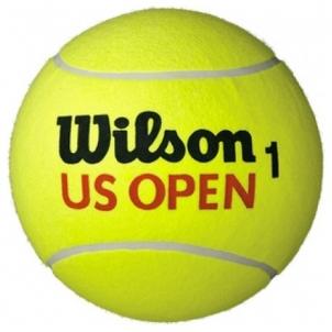 Teniso kamuoliai Jumbo Tennis