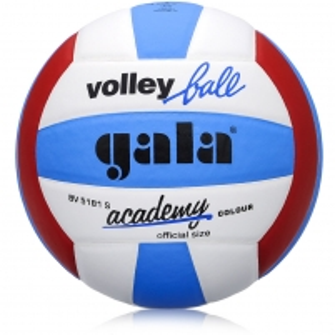 Tinklinio kamuolys GALA Academy Balance
