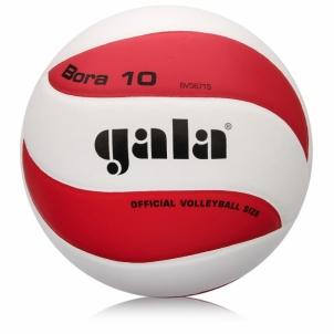 Tinklinio kamuolys GALA ORA BV5671
