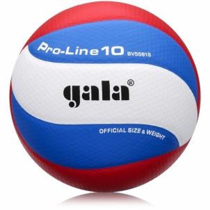 Tinklinio kamuolys GALA PRO-LINE BV5581