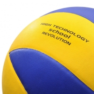 Tinklinio kamuolys Meteor School Revolution
