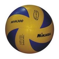 Tinklinio kamuolys Pro Volley Volleyball balls