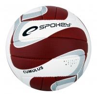 Tinklinio kamuolys Spokey CUMULUS II Brown/white
