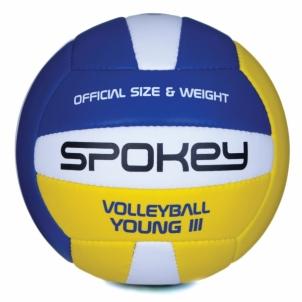 Tinklinio kamuolys Young II balta/mėlyna/geltona