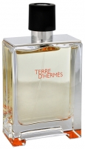 Tualetinis vanduo Hermes Terre D Hermes EDT 100ml (testeris) Kvepalai vyrams