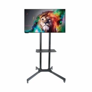 TV laikiklis ART BOARD on wheels+HOLDER TO TV LCD/LED/PLAZMA 30-65 60KG S-08A TV stovai, laikikliai