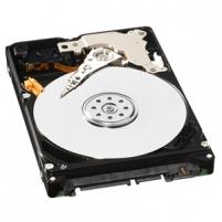 Vidinis diskas WD AV-25, 2.5'', 1TB, SATA/300, 5400RPM, 16MB
