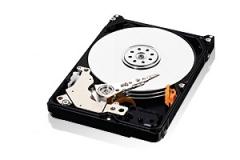 Vidinis diskas WD AV-25 2.5'' 500GB SATA2 5400RPM 16MB Internal hard drives