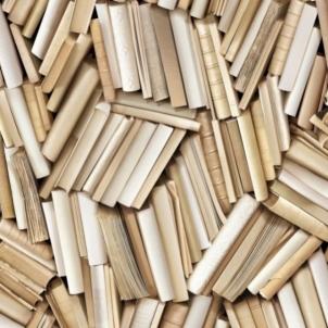 J451-17 53 cm tapetai, šviesūs knygų nugarėlių rašto Viniliniai wallpaper-download photo