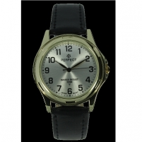 Male laikrodis Watch PERFECT PRF-K16-103