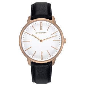 Vyriškas laikrodis Pierre Cardin PC106991F27